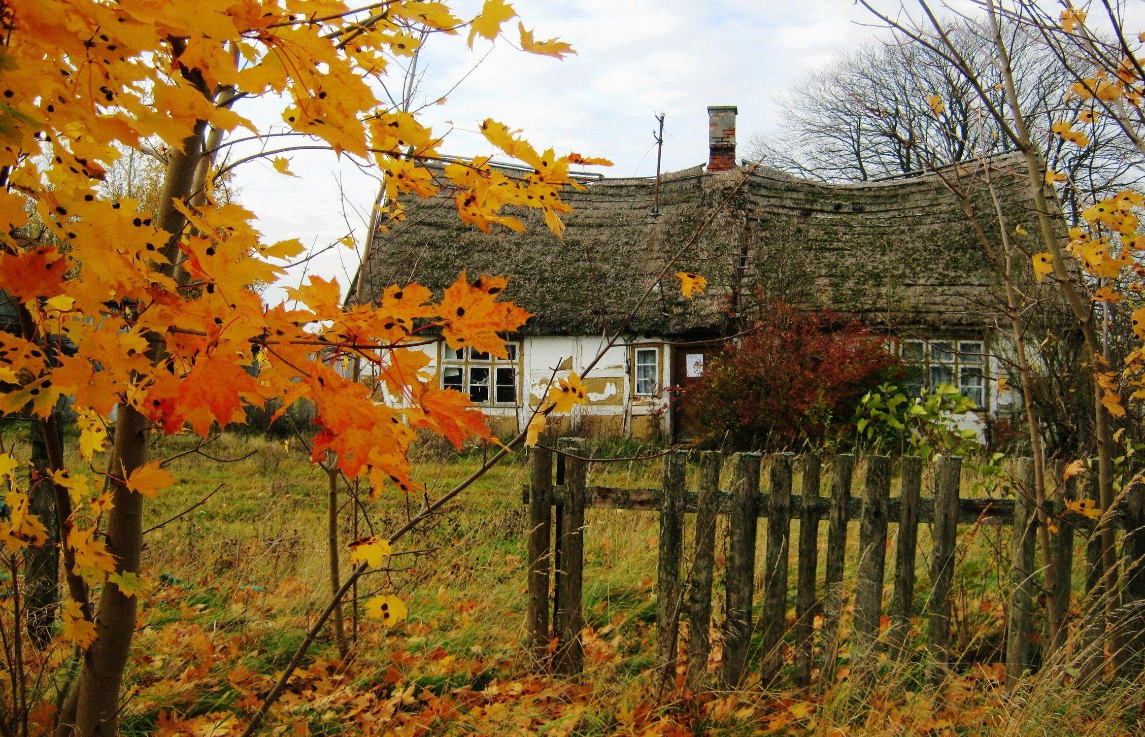 Jesień, Stara Chata, Płot, Drzewa, Liście