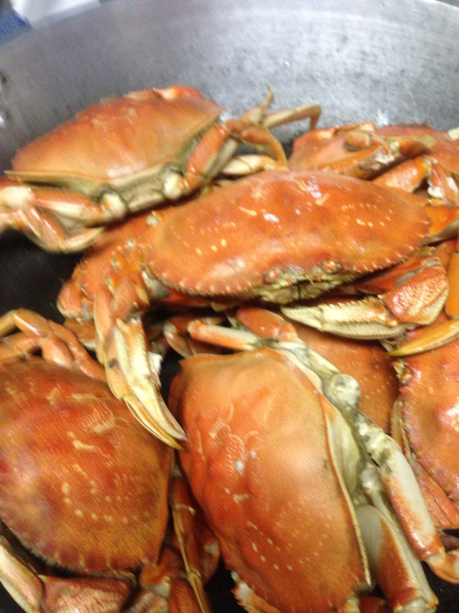 Steamed Crab Sauce Vinegar And Minced Garlic Steamed Crabs Filipino Recipes Crab
