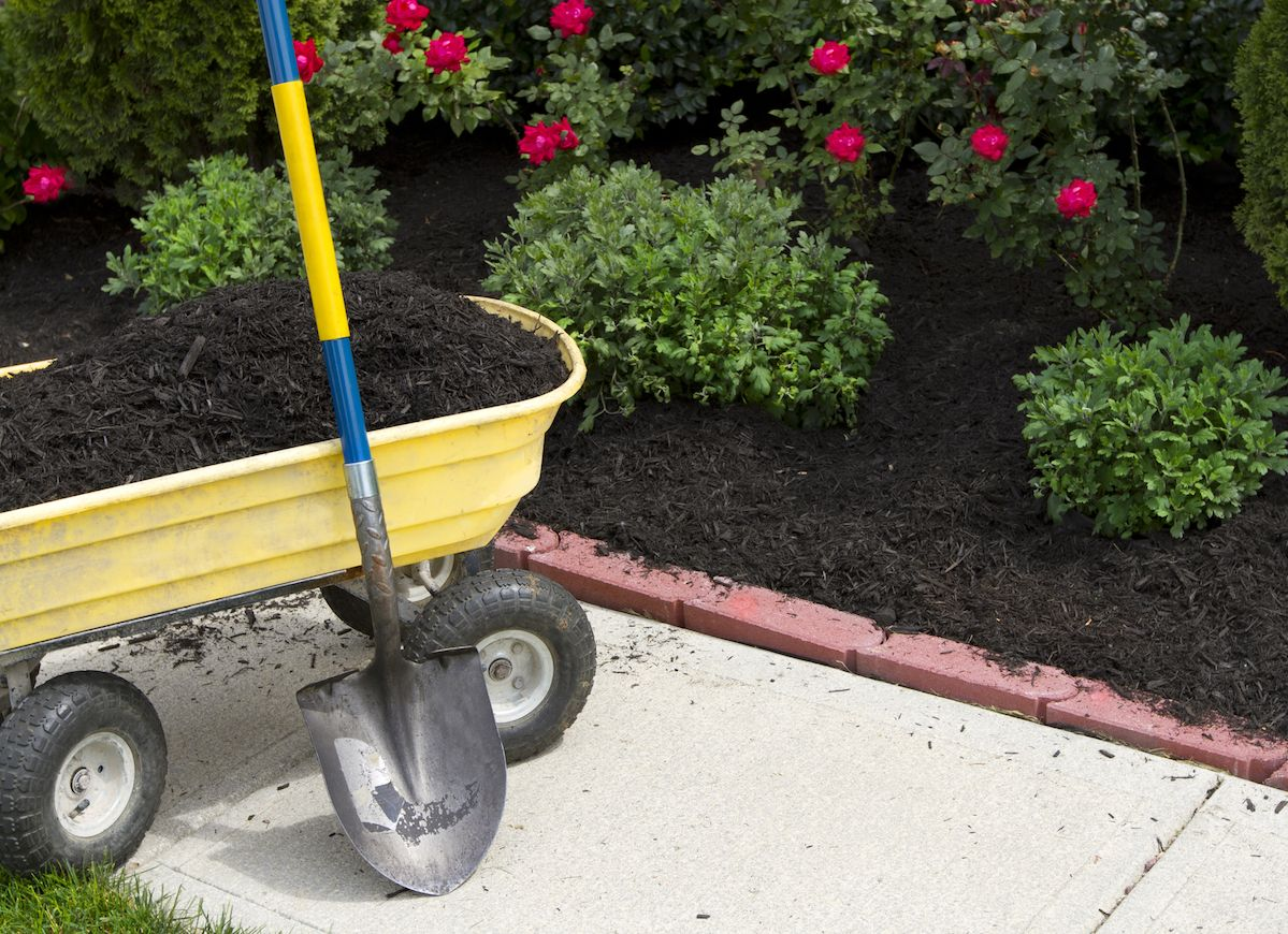 8 Smart Ways To Put Your Garden On Autopilot Landscaping Tips