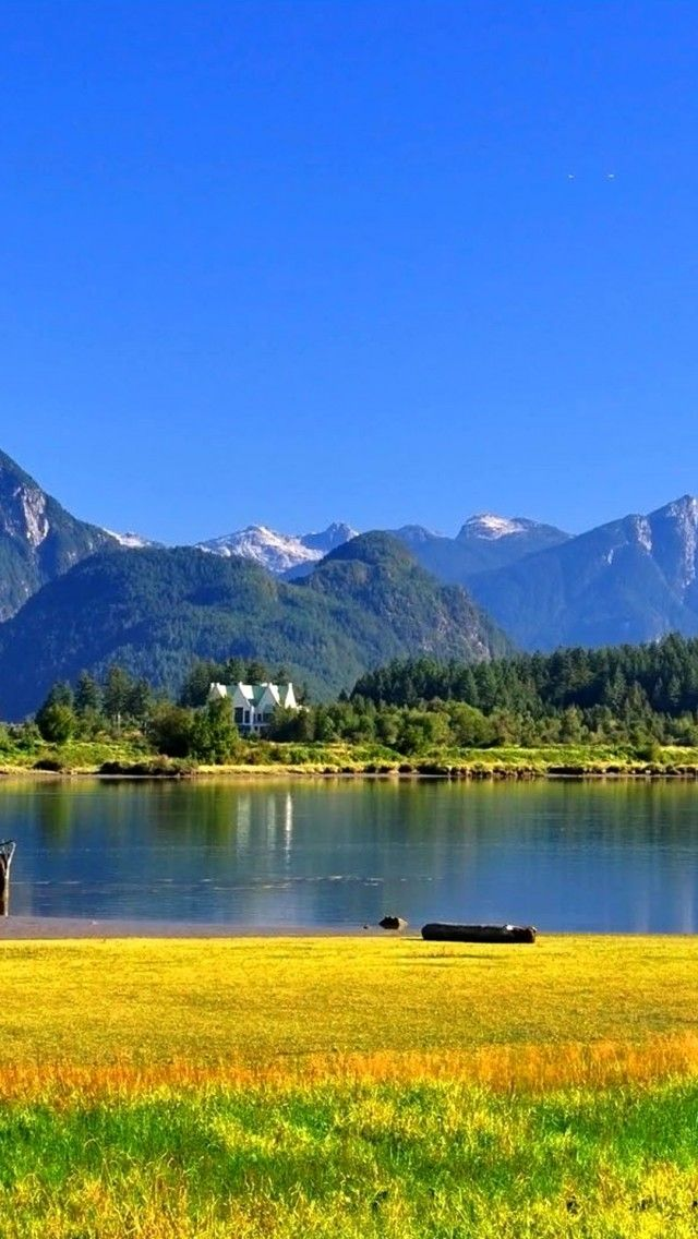 /On-the-Shore-of-the-Pitt-River-Pitt-Meadows-BC-Canada
