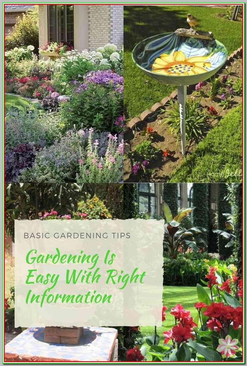 b5bd84b284cb1245b655320587bf3e27 - What Are The Basic Gardening Techniques