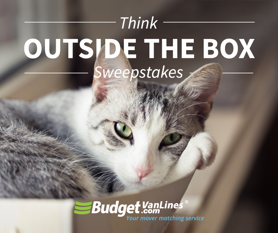 Think Outside The Box Giveaway  Enter for a chance to win a Housewarming Gift Basket filled with snacks and games for your first night in your new home.  USA Only Giveaway
