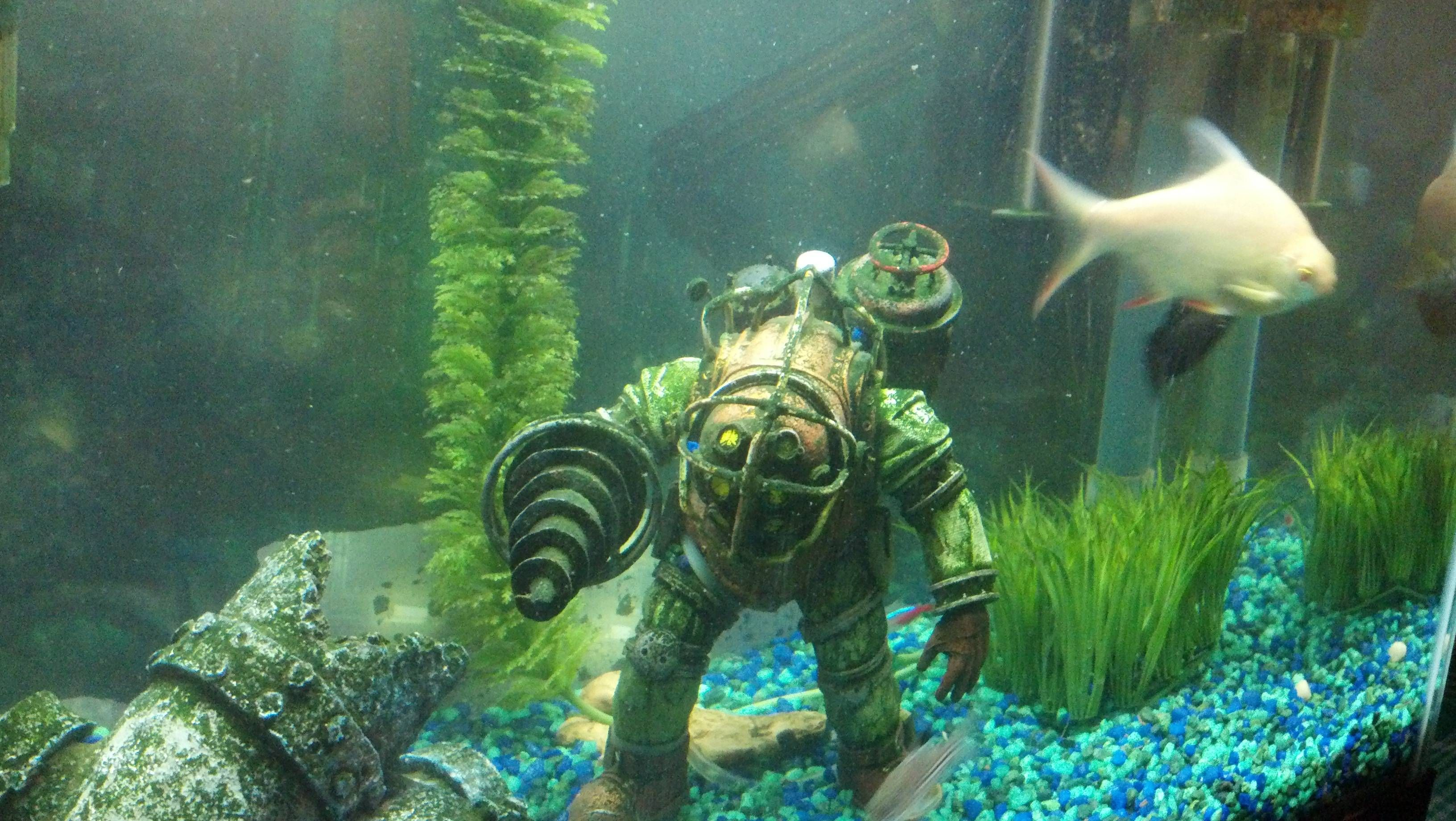 Aquarium Decoration Gaming Geeks Gallery Pinterest