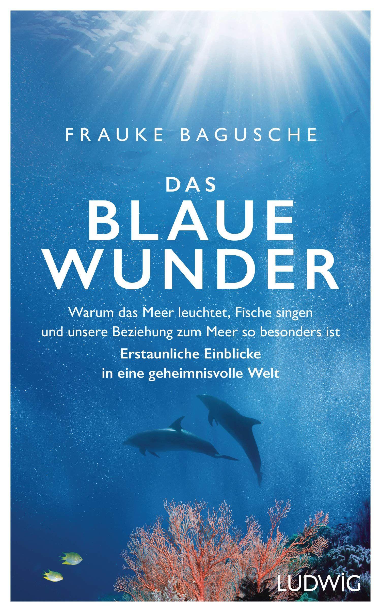 Zum Meer So Besonders Ist A Erstaunliche Einblicke In Eine Geheimnisvolle Welt Architektur Biowissenschaften C Blaues Wunder Geheimnisvoll Buch Bestseller