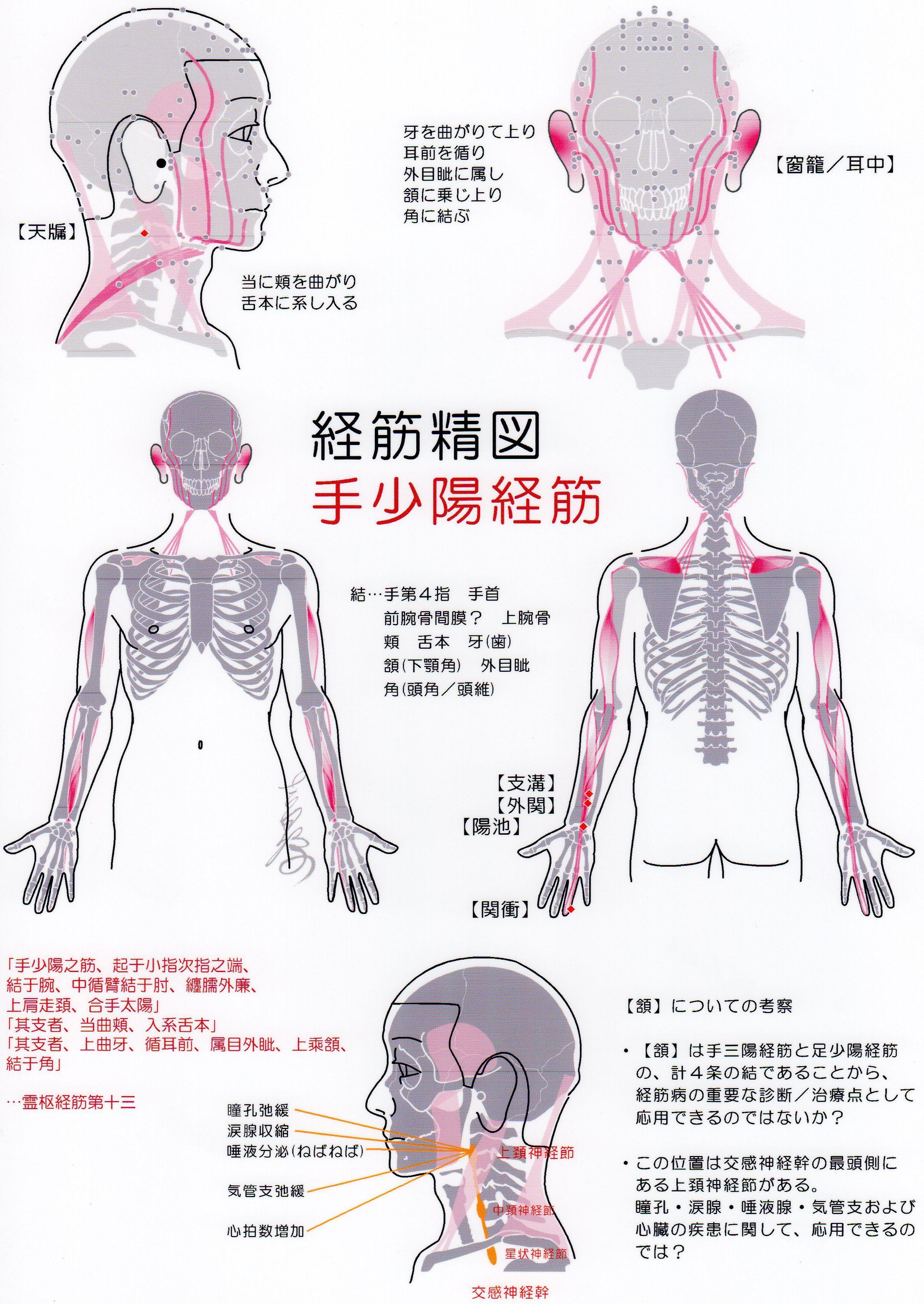 千葉県の日本東洋医学会 漢方専門医のいる病院・ …