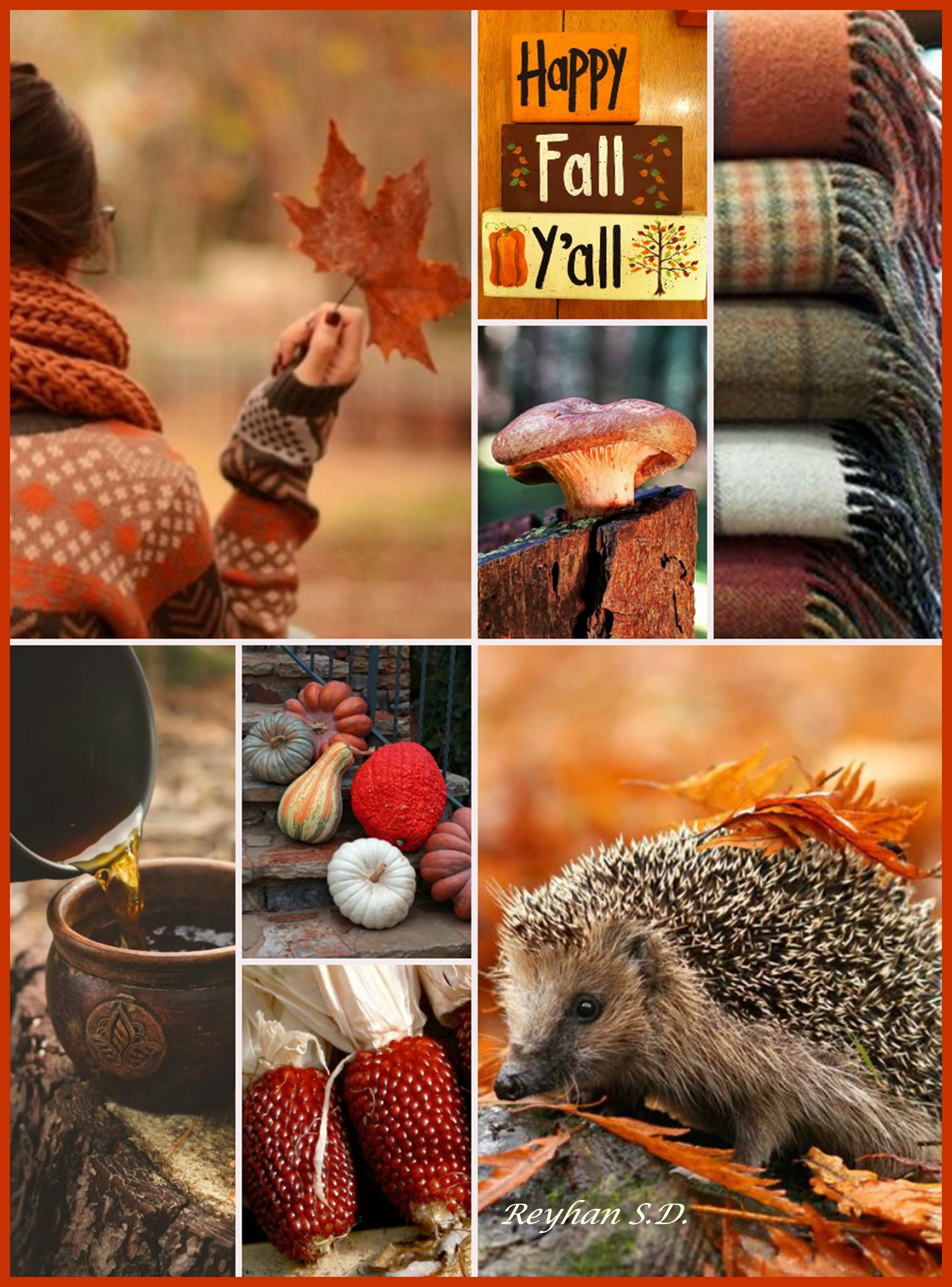 '' Happy Fall '' by Reyhan S.D. Mood board collage inspiration photo