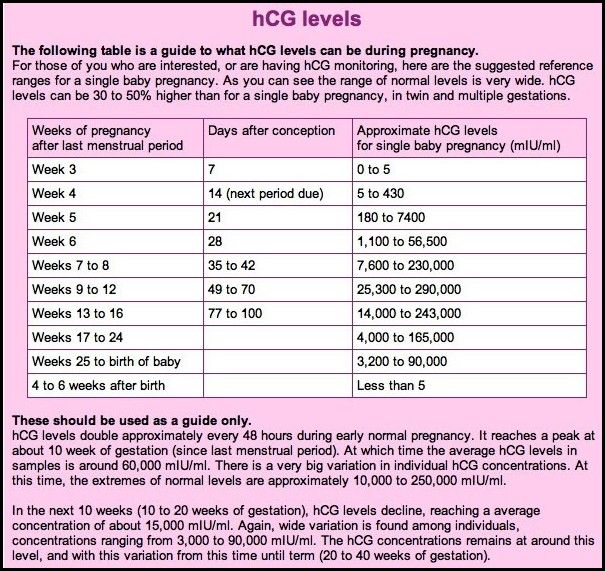 Ivf Pregnancy Test Hcg Levels For Twins - Pregnancy Symptoms