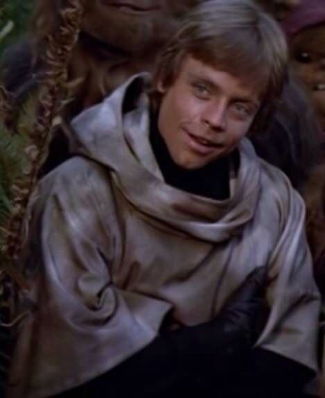 Luke Skywalker Nooo : skywalker, Someone, Makes, Skywalker, Reference, Don't, Cast,, Skywalker,, Pictures