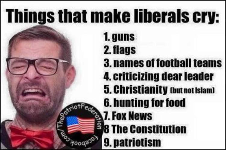 b5c08060e8c14aebe3f1604524b6cbfc liberal crybabies idiots true true pinterest crybaby, politics