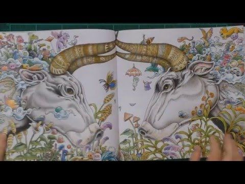 Colouring Book Review Animorphia With Tips And Coloured Pages