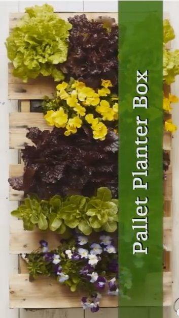 faire une jardini re verticale avec une palette tutoriel jardin jardini res verticales. Black Bedroom Furniture Sets. Home Design Ideas