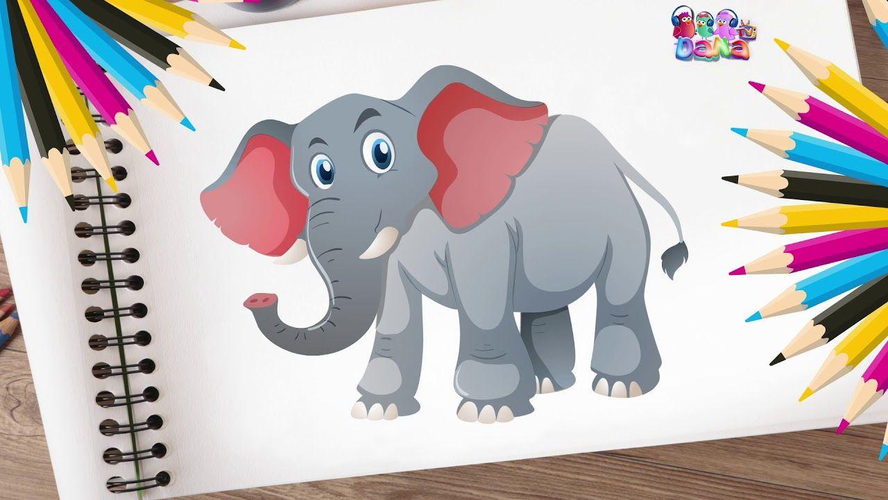 هيا لنرسم الحيونات ونلونهم رسم نمر رسم حصان رسم فيل رسم غزال D Kids Rugs Anime Decor