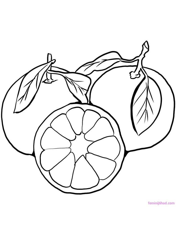 36++ O is for orange coloring page download HD