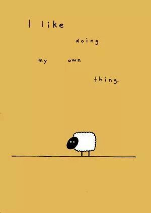 I Like Doing My Own Thing Introverts Unite Quotes