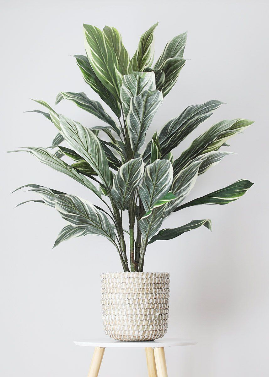 Fake Potted Cordyline Palm Floor House Plant 40 In 2020 House