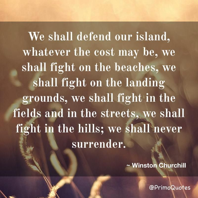 We Shall Defend Our Island Whatever The Cost May Be We Shall Fight On The Beaches We Shall Fi Churchill Quotes Daily Inspiration Quotes Inspirational Quotes