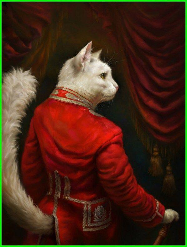 Gambar Kucing Lucu Imut Dan Paling Menggemaskan Sedunia Gambar Kucing Lucu Kucing Kucing Lucu