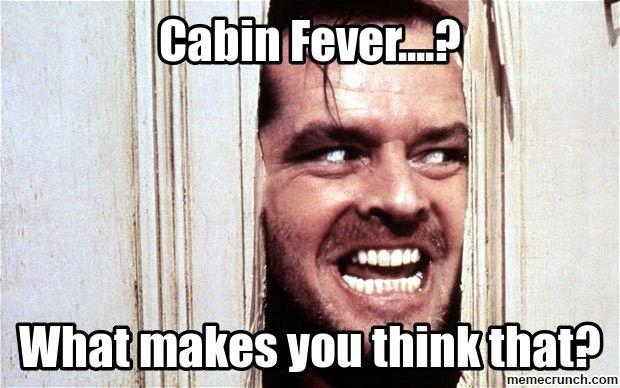 b5c410332c35724264583d5ea8eca3c4 cabin fever ? dassit pinterest cabin fever and meme