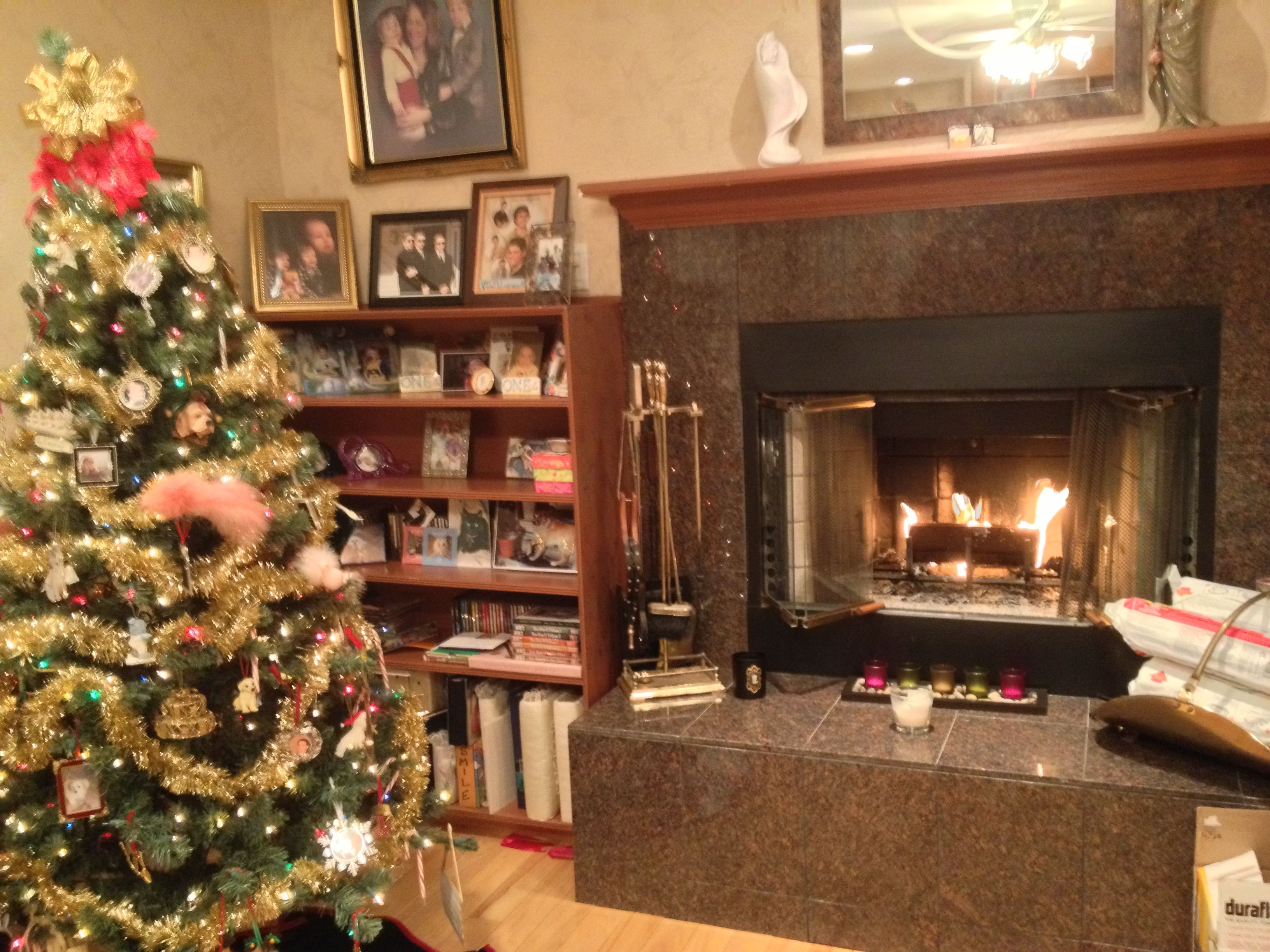 Get cozy by the fire at Hamptons House of Gardens BuB Christmas