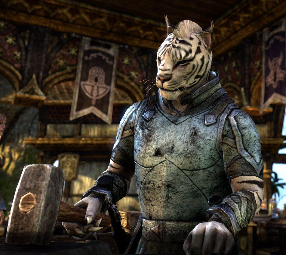 Elder Scrolls Online Best Archer Build
