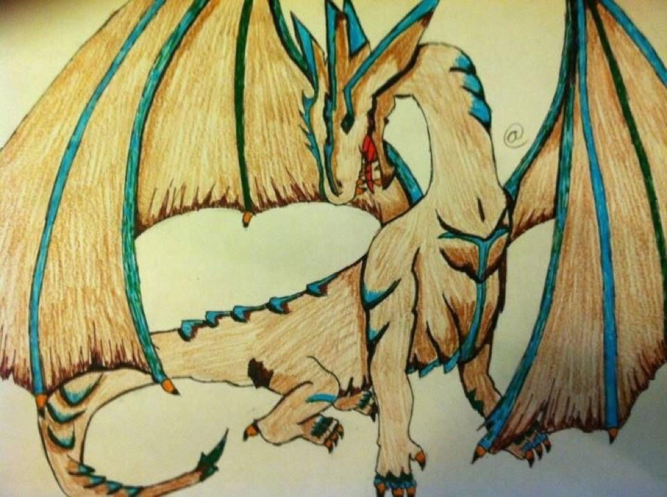 I used to love to draw #dragons ! The coloring on this was my favorite thing