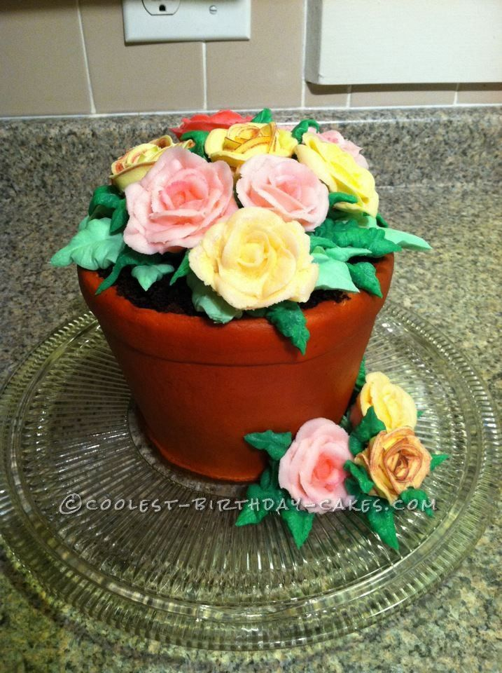 Coolest Flower Pot Birthday Cake With Images Cool Birthday
