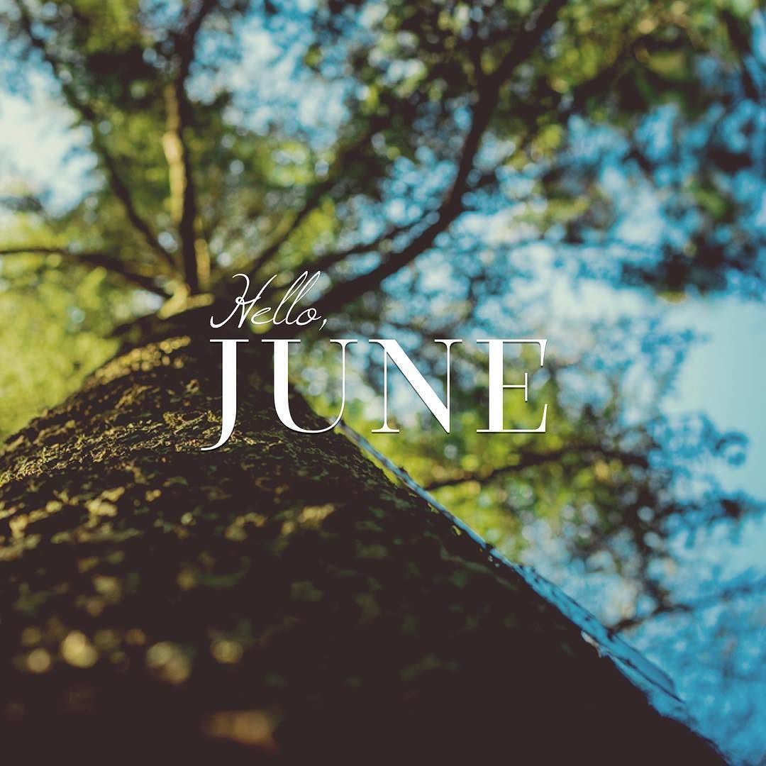 Hello June. Please be good to us! Made using the Windsong & Questa fonts.
