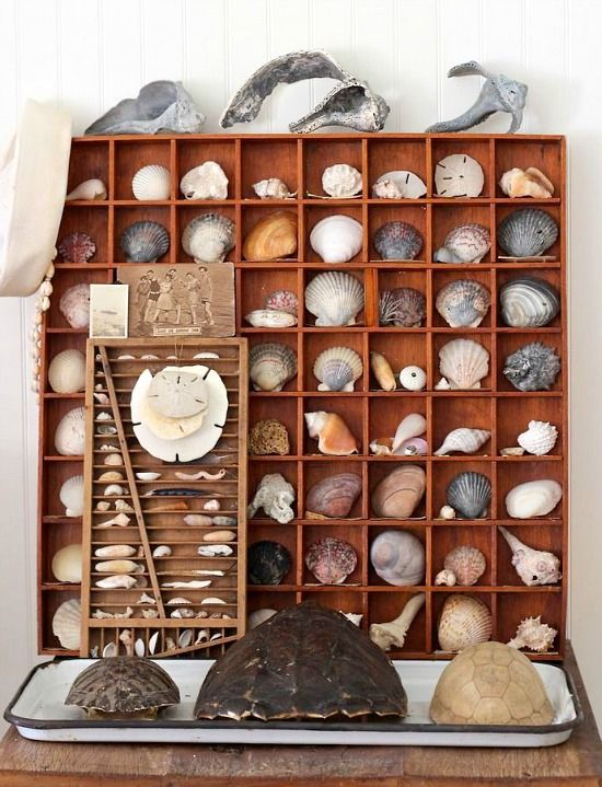 Savor your Beach Memories! Photo display and shell decor ideas from a stylist: http://beachblissliving.com/vacation-memories-photo-display-shell-decor-ideas/