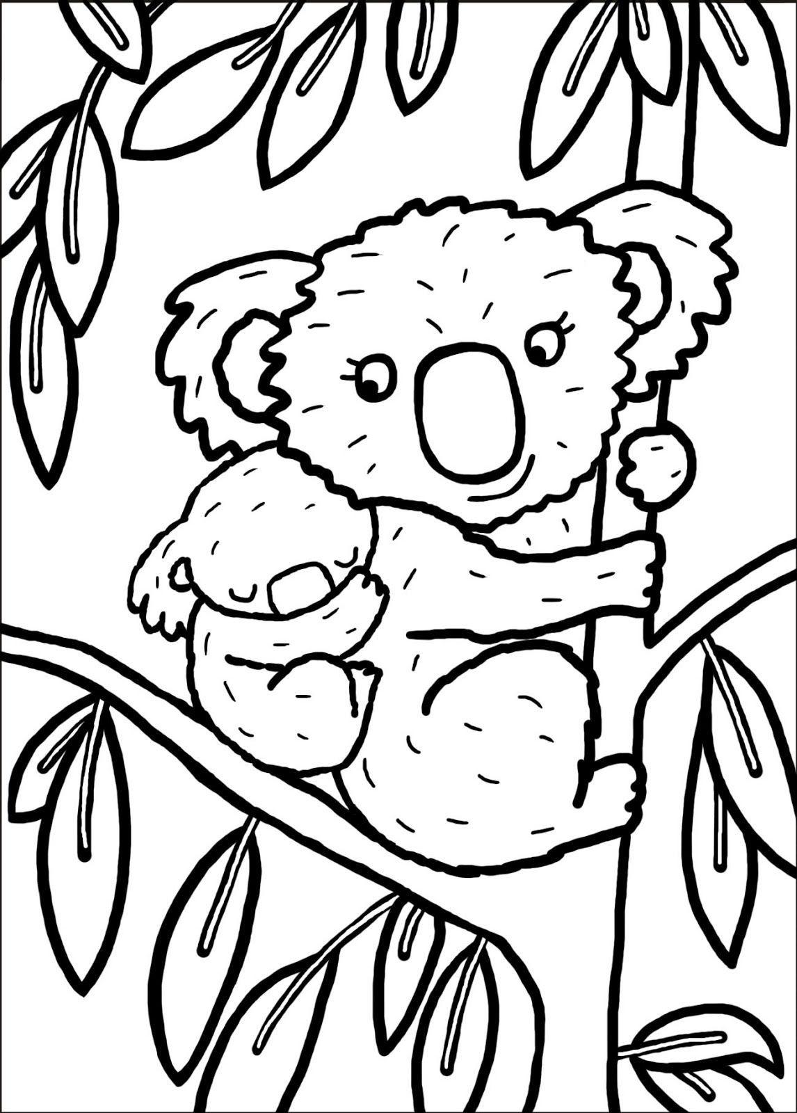 Coloriage Koala A Imprimer Pour Les Enfants Cp15291 Zoo Animal