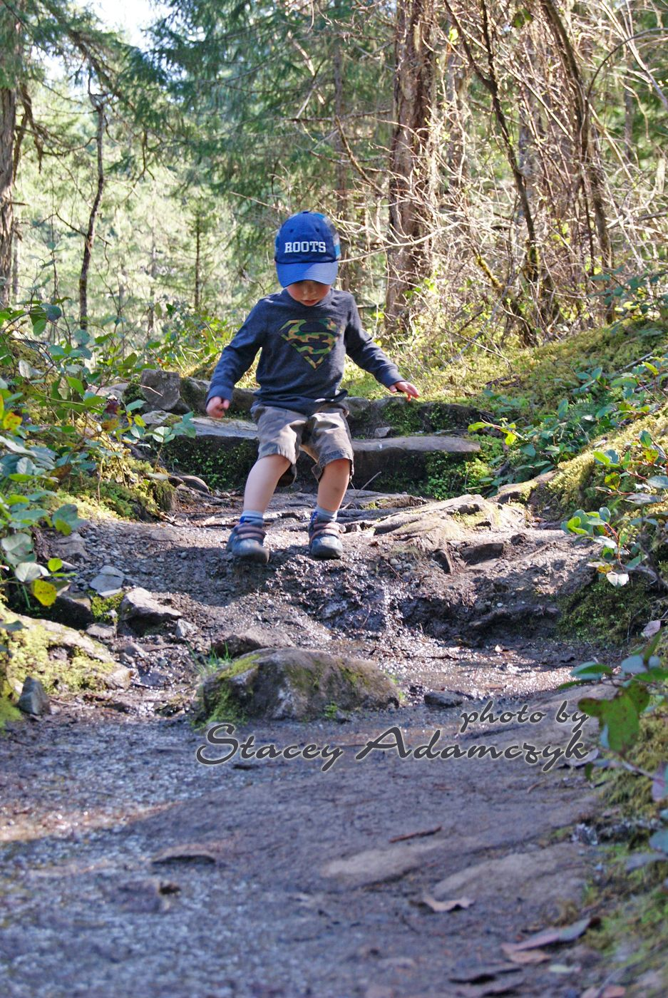 Hike Victoria Bc Guided Hiking Walking Tours: Little Qualicum Falls Hike Near Parksville BC.