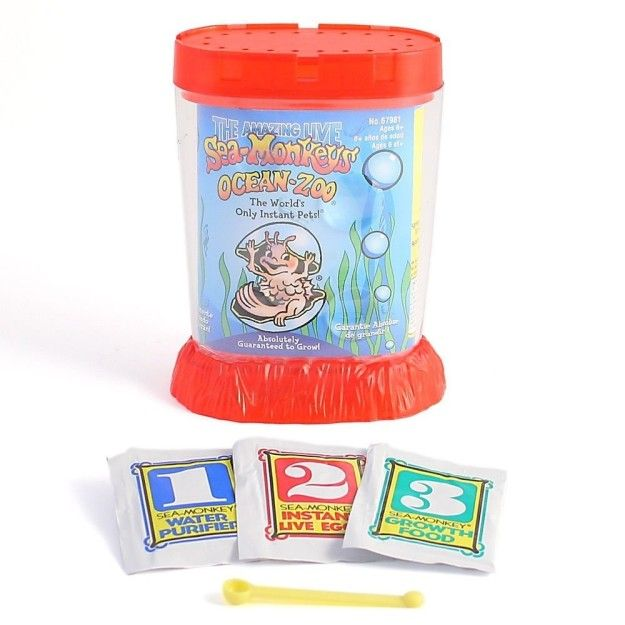 A Sea Monkey Kit For Those Who Probably Can T Be Trusted With Keeping Real Pets Alive Sea Monkeys Sea Cool Things To Buy