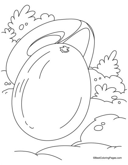 Chickoo And A Half Coloring Pages