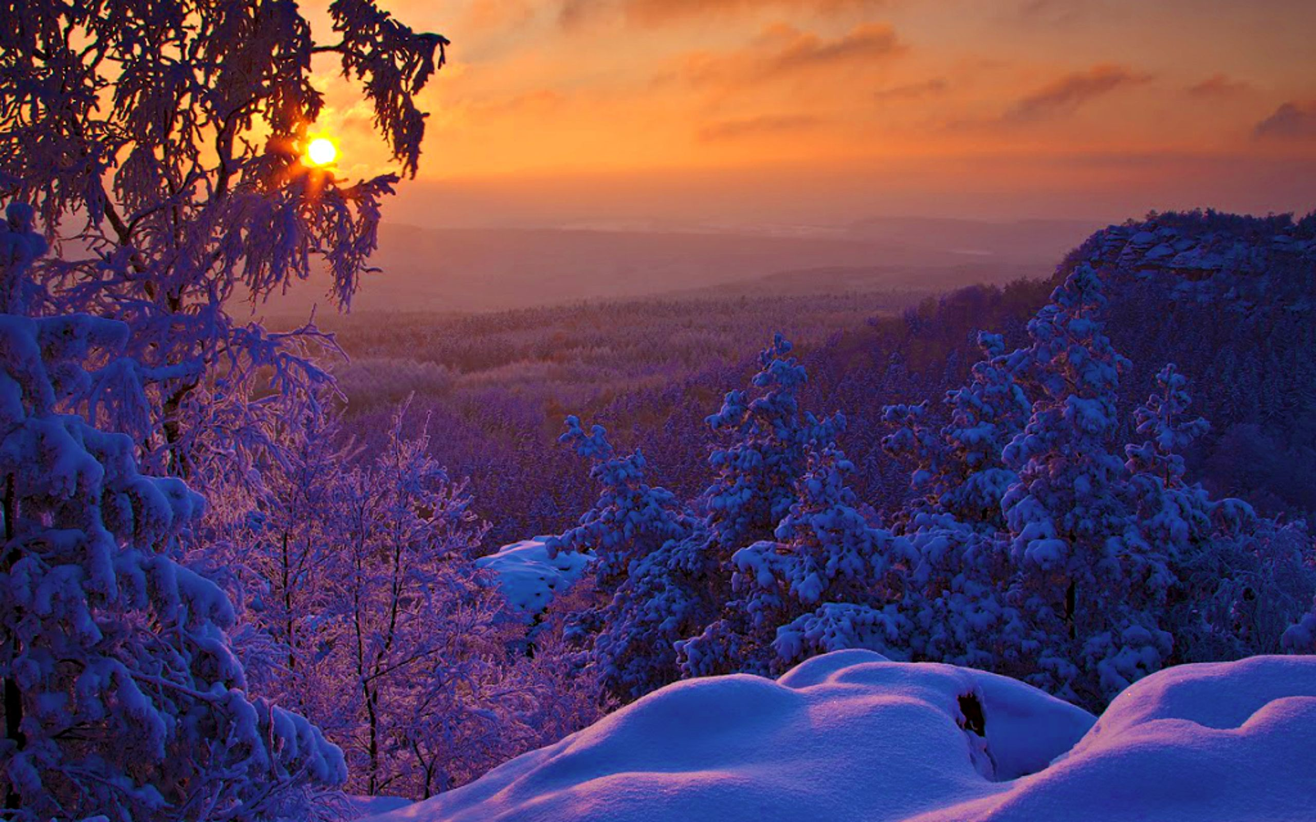 Beautiful Snowflake In The Sunlight: HD Winter Morning Sun Rise Wallpaper