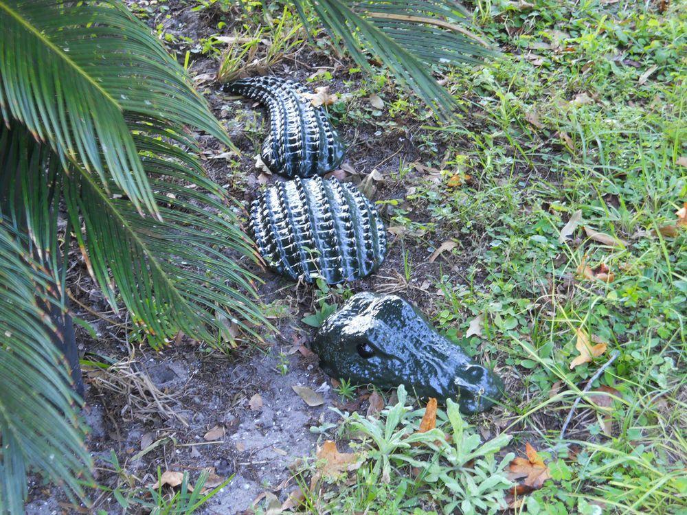 3 Pc Daddy Alligator Garden Statue / Yard Art / Garden Stone / Lawn Decor
