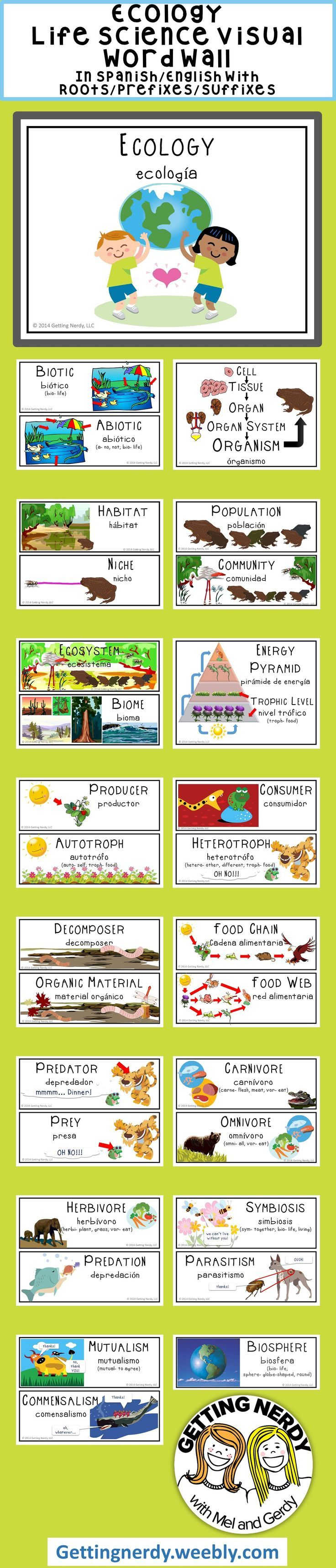Ecology - Word Wall | Spanish english, Prefixes and Ecology