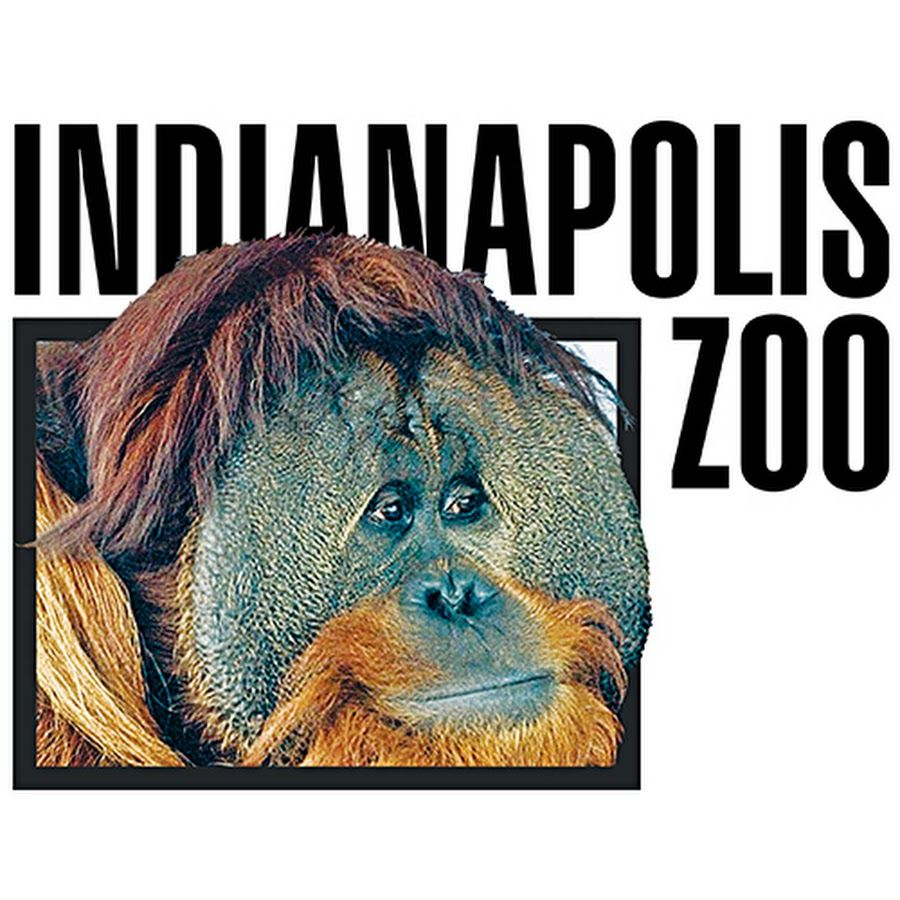 The Mission Of The Indianapolis Zoo Is To Empower People And Communities Both Locally And Globally To Animal Conservation Shark Conservation Indianapolis Zoo