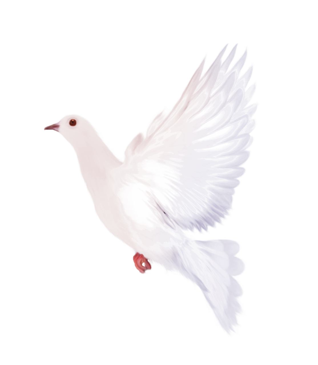 White Dove Clipart Gallery Yopriceville High Quality Images And Transparent Png Free Clipart Clip Art White Doves Clipart Gallery