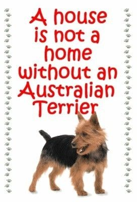 Australian Terrier Owners - just for you! One of over 200 breeds available in our ebay store.