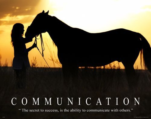 Horse Motivational Poster Art Western Decor Cowgirl Rodeo Saddle Spurs MVP298