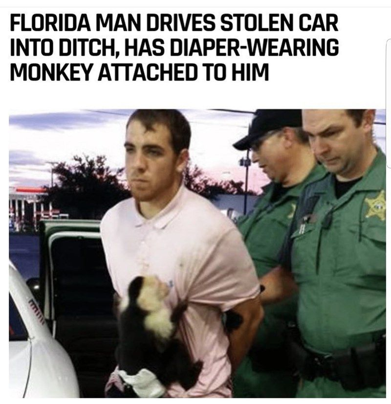 15 Times Florida Man Proved His Title As The Anti Hero Of The
