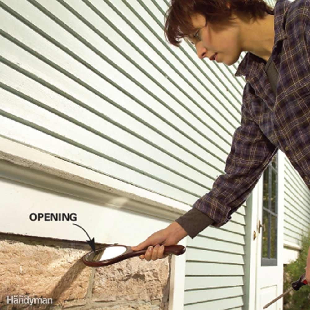 Do It Yourself Pest Control Strategies And Techniques Pest Prevention Pest Control Pests