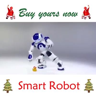 Smart Robot - Christmas Flash Sale Buy 4 Get 1 Free!