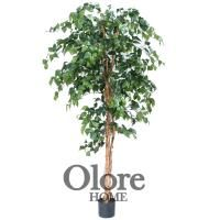 6ft Green Ficus Tree - Indoor Artificial Tree by Olore Home