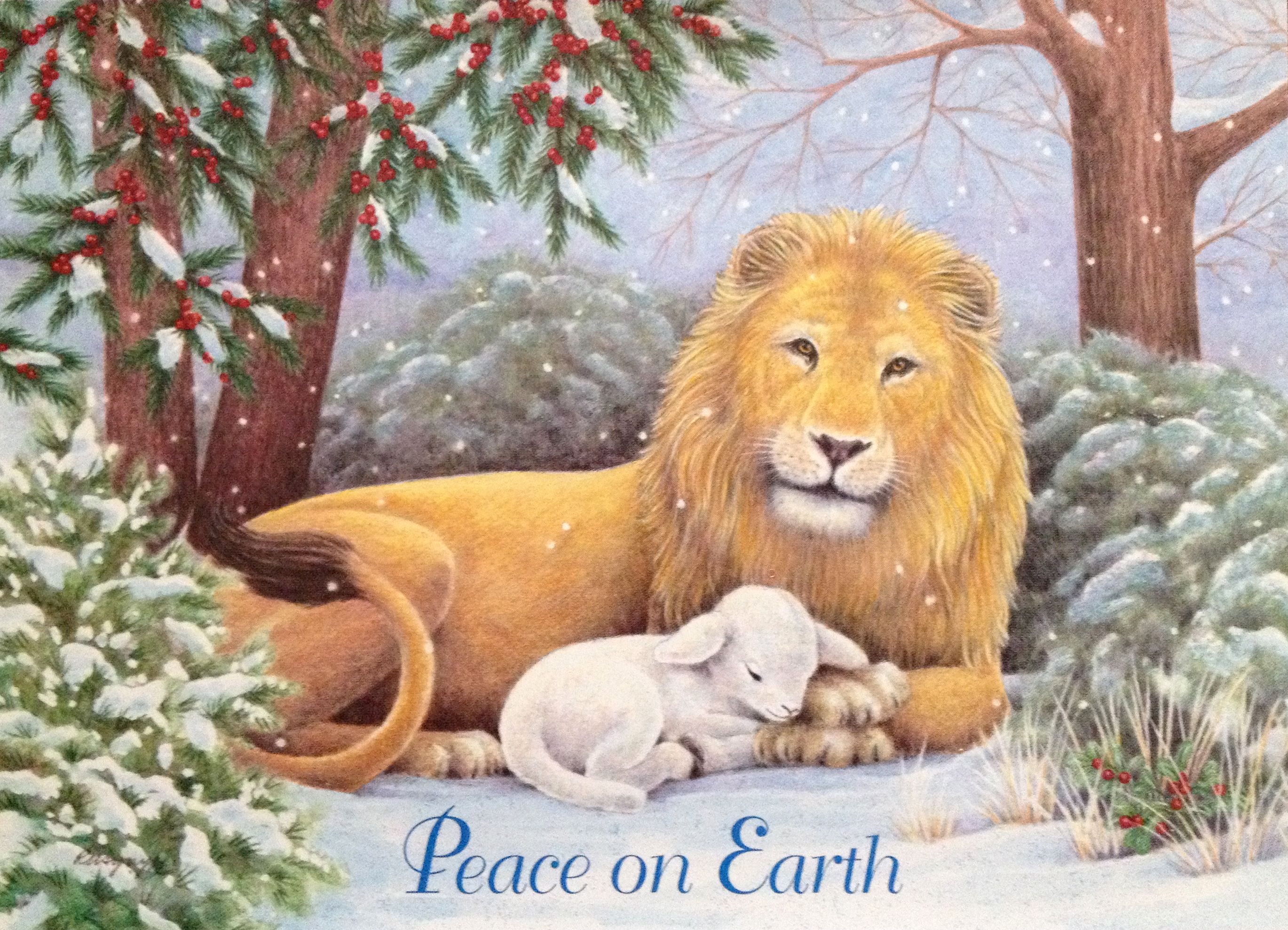 Lion & Lamb Christmas card by Paper Magic. Inside message = Isaiah ...