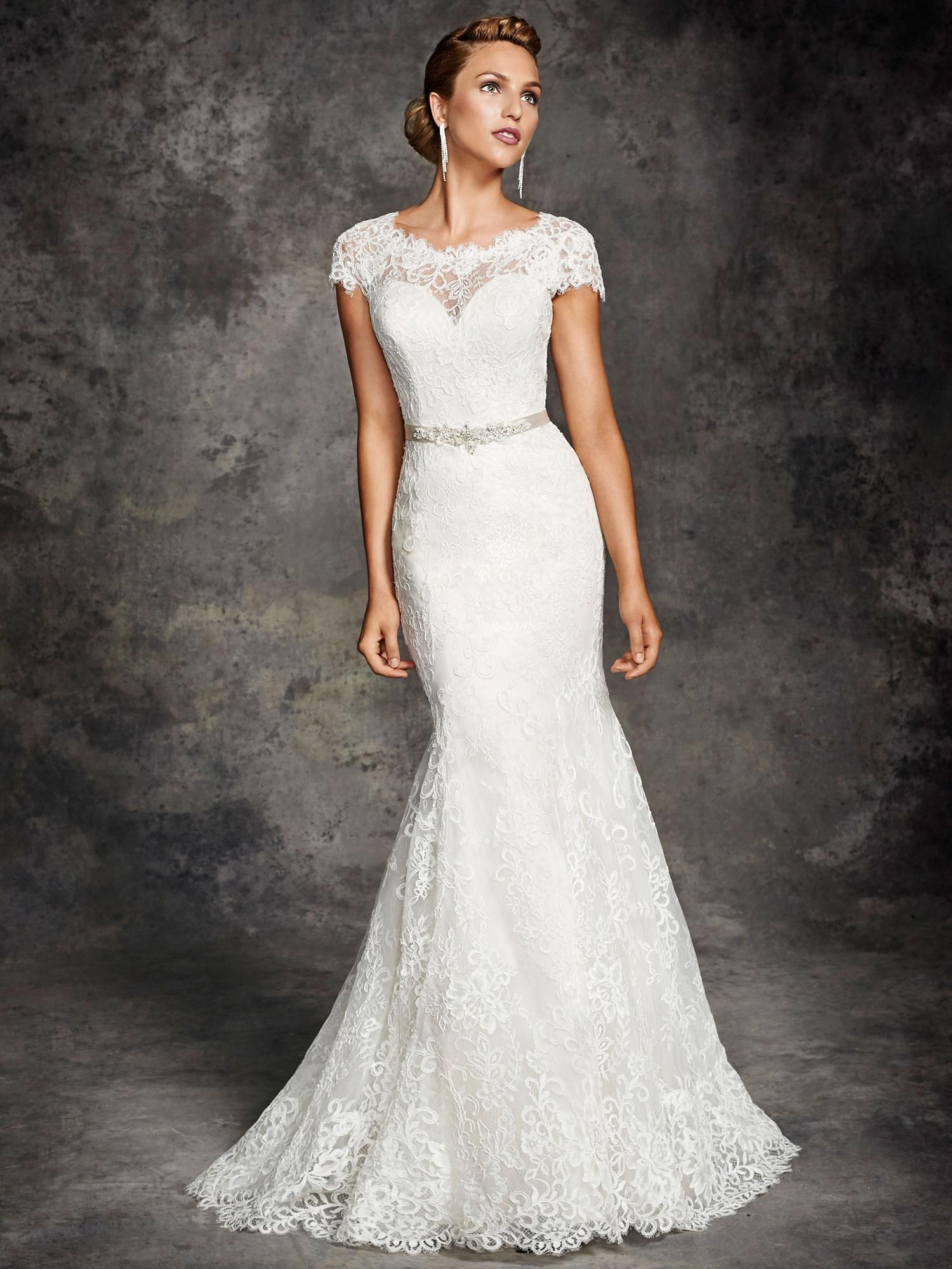 Lace mermaid wedding gowns with long trains  Ella Rosa  Spring Wedding Dresses for Chapel Wedding Jewel Neck