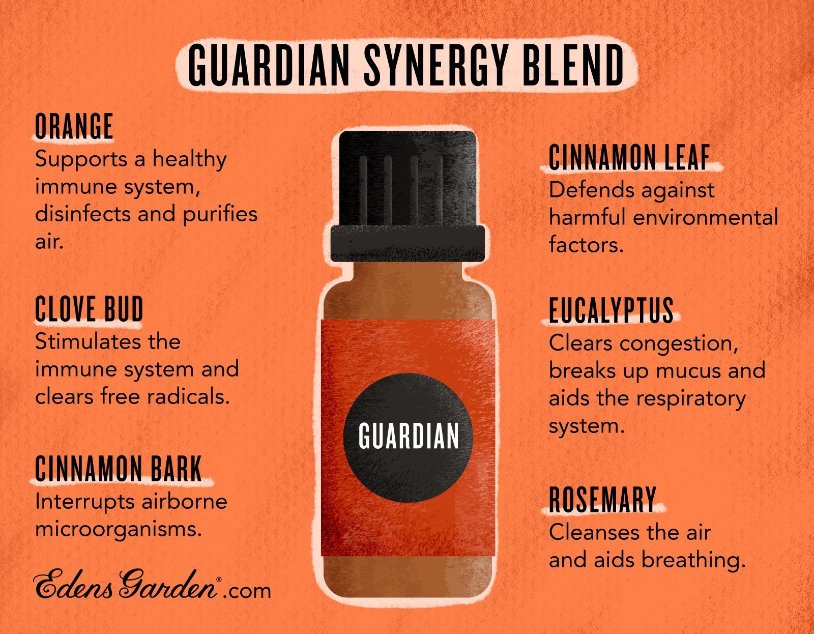 Guardian Essential Oil Blend in 2020 Edens garden