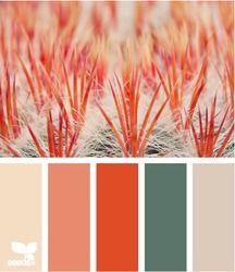 macro hues