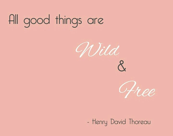 All good things are wild and free - Thoreau