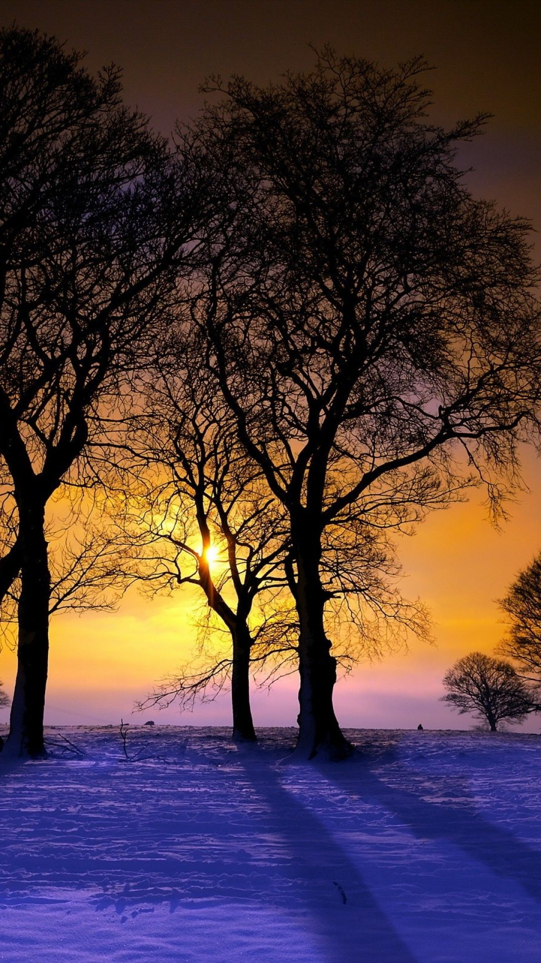 Download Wallpaper 1080x1920 Sunset Winter Trees Landscape Sony Xperia Z1 ZL Z Samsung Galaxy S4 HTC One HD Background