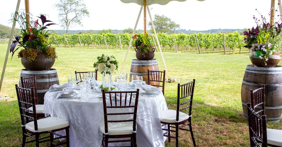 Carolyn S Sakonnet Vineyard In Little Compton Rhode Island Wedding Venues